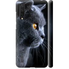 Чехол на Xiaomi Mi CC9 Красивый кот (3038c-1747)