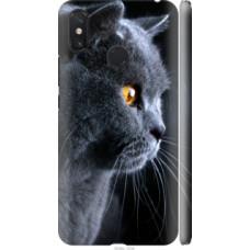 Чехол на Xiaomi Mi Max 3 Красивый кот (3038c-1534)