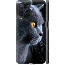 Чехол на Xiaomi Mi9 Красивый кот (3038c-1648)