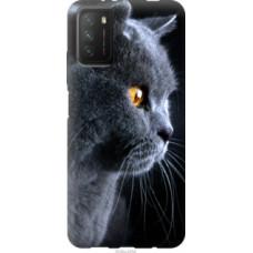 Чехол на Xiaomi Poco M3 Красивый кот (3038u-2200)