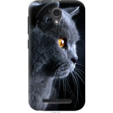 Чехол на ZTE L110 Красивый кот (3038u-435)