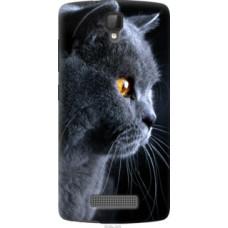 Чехол на ZTE L5 Красивый кот (3038u-429)